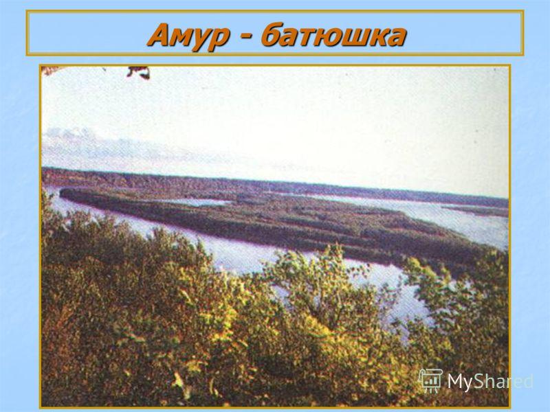 Амур - батюшка