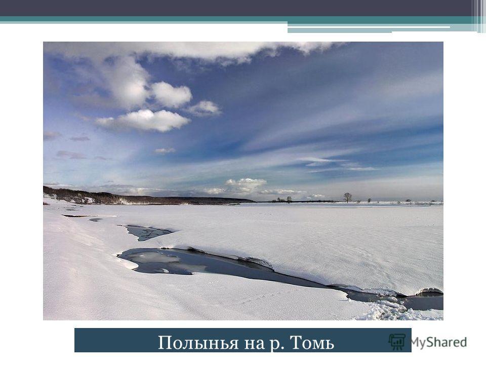 Полынья на р. Томь
