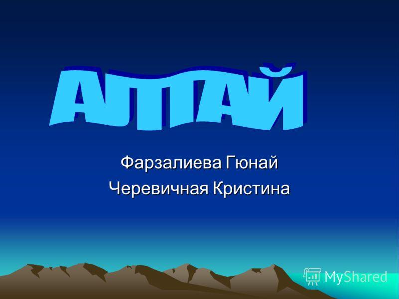Фарзалиева Гюнай Черевичная Кристина