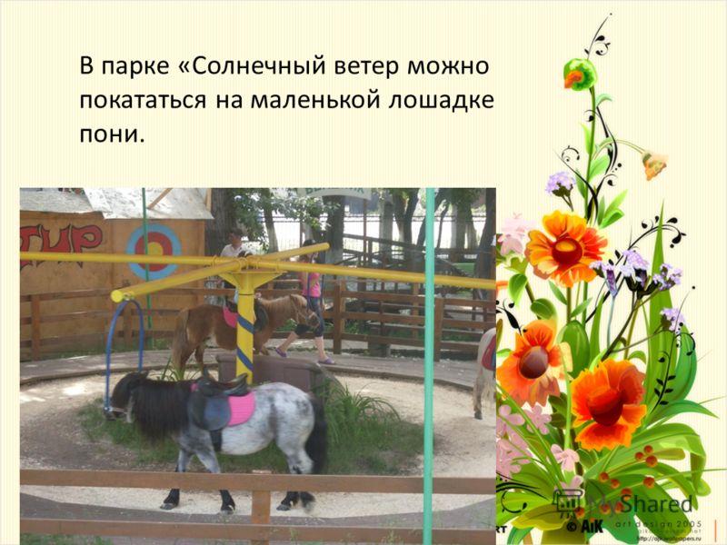 В парке «Солнечный ветер можно покататься на маленькой лошадке пони.