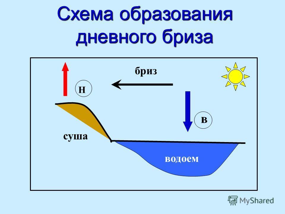 Схема образования дневного бриза суша водоем Н в бриз
