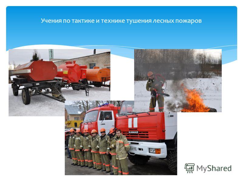Учения по тактике и технике тушения лесных пожаров