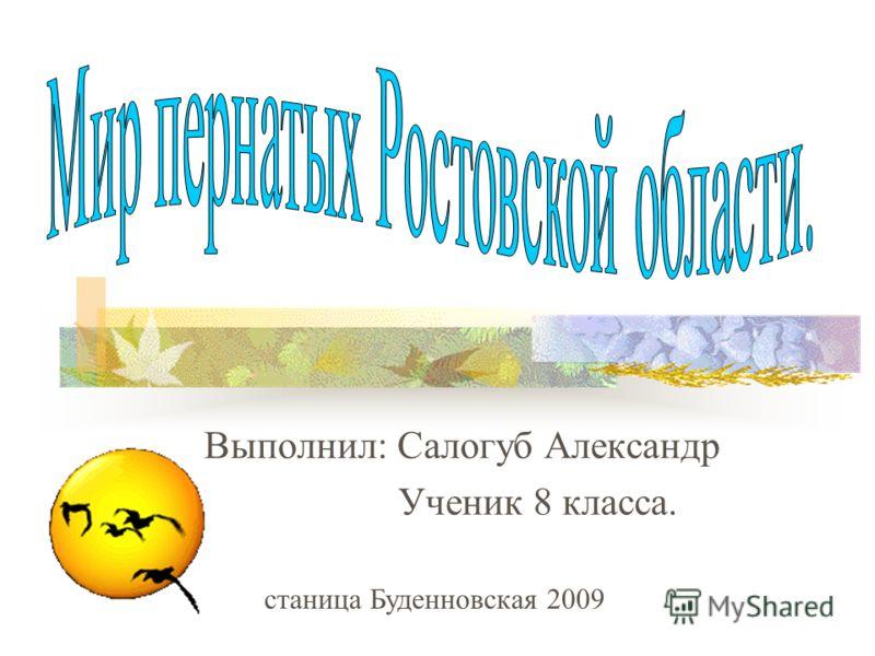 Выполнил: Салогуб Александр Ученик 8 класса. станица Буденновская 2009