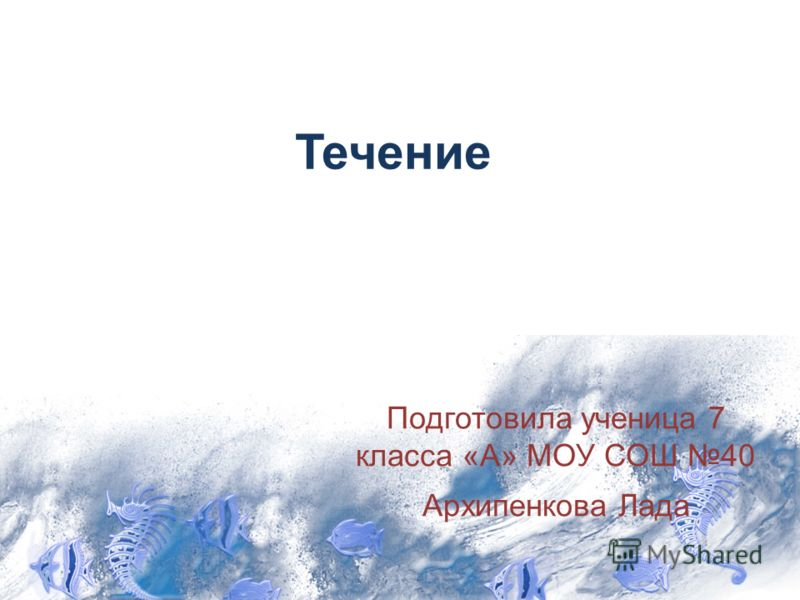 Течение Подготовила ученица 7 класса «А» МОУ СОШ 40 Архипенкова Лада