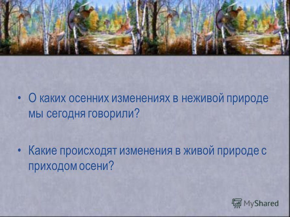 О каких осенних изменениях в неживой природе мы сегодня говорили? Какие происходят изменения в живой природе с приходом осени?