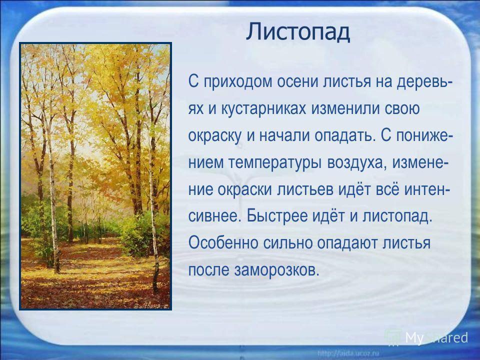 Листопад С приходом осени листья на деревь- ях и кустарниках изменили свою окраску и начали опадать. С пониже- нием температуры воздуха, измене- ние окраски листьев идёт всё интен- сивнее. Быстрее идёт и листопад. Особенно сильно опадают листья после