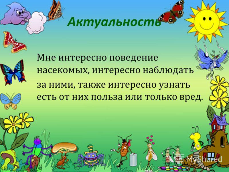 Актуальность Мне интересно поведение насекомых, интересно наблюдать за ними, также интересно узнать есть от них польза или только вред.