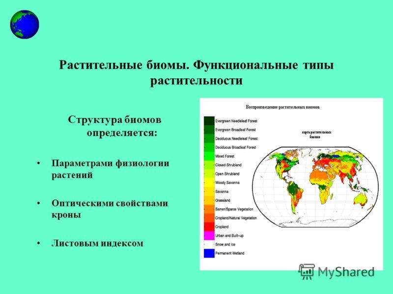 Растительные биомы. Функциональные типы растительности Структура биомов определяется: Параметрами физиологии растений Оптическими свойствами кроны Листовым индексом