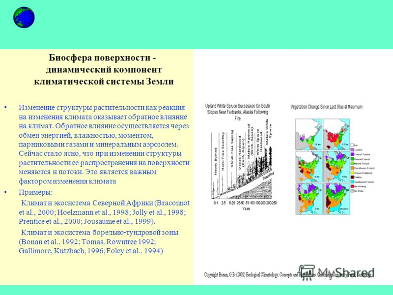 Биосфера поверхности - динамический компонент климатической системы Земли Изменение структуры растительности как реакция на изменения климата оказывает обратное влияние на климат. Обратное влияние осуществляется через обмен энергией, влажностью, моме