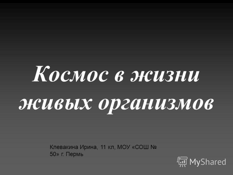 Космос в жизни живых организмов Клевакина Ирина, 11 кл, МОУ «СОШ 50» г. Пермь