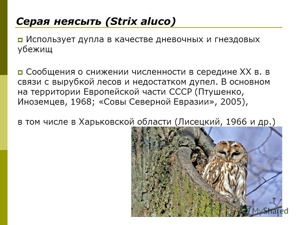 Использует дупла в качестве дневочных и гнездовых убежищ Сообщения о снижении численности в середине ХХ в. в связи с вырубкой лесов и недостатком дупел. В основном на территории Европейской части СССР (Птушенко, Иноземцев, 1968; «Совы Северной Еврази