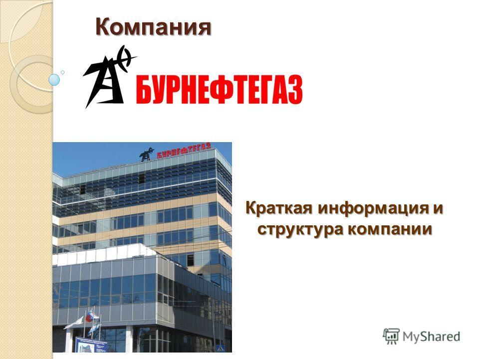 Компания Краткая информация и структура компании