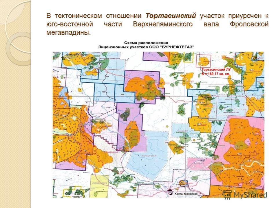В тектоническом отношении Тортасинский участок приурочен к юго-восточной части Верхнеляминского вала Фроловской мегавпадины.