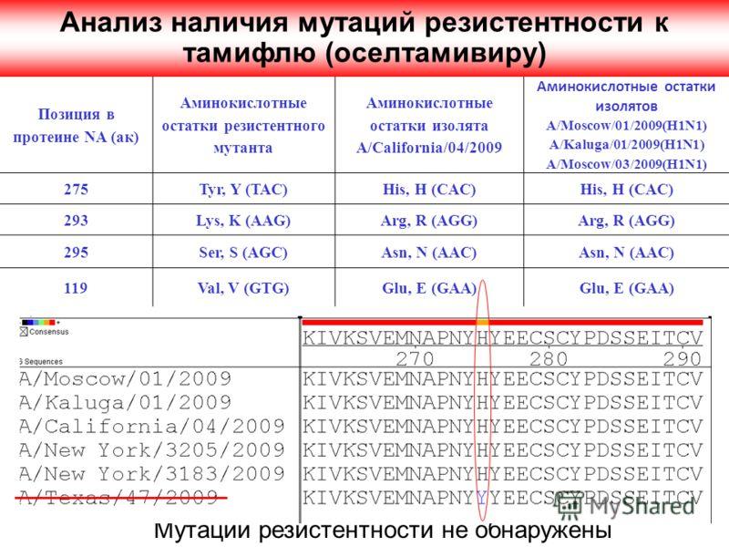 Позиция в протеине NA (ак) Аминокислотные остатки резистентного мутанта Аминокислотные остатки изолята A/California/04/2009 Аминокислотные остатки изолятов A/Moscow/01/2009(H1N1) A/Kaluga/01/2009(H1N1) A/Moscow/03/2009(H1N1) 275Tyr, Y (TAC)His, H (CA