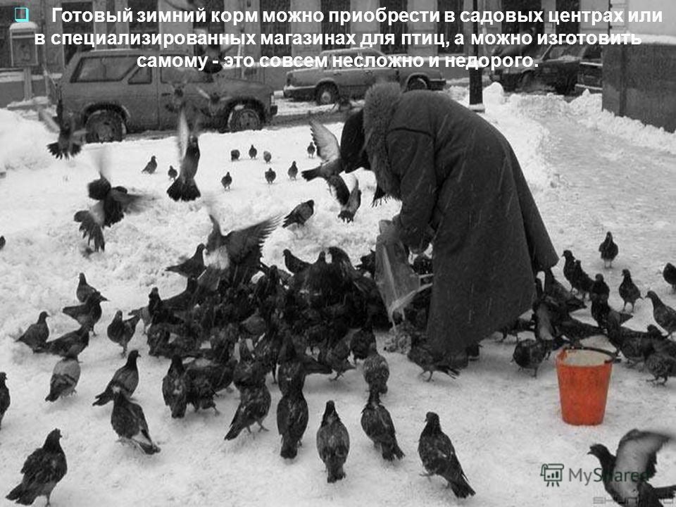 Готовый зимний корм можно приобрести в садовых центрах или в специализированных магазинах для птиц, а можно изготовить самому - это совсем несложно и недорого.