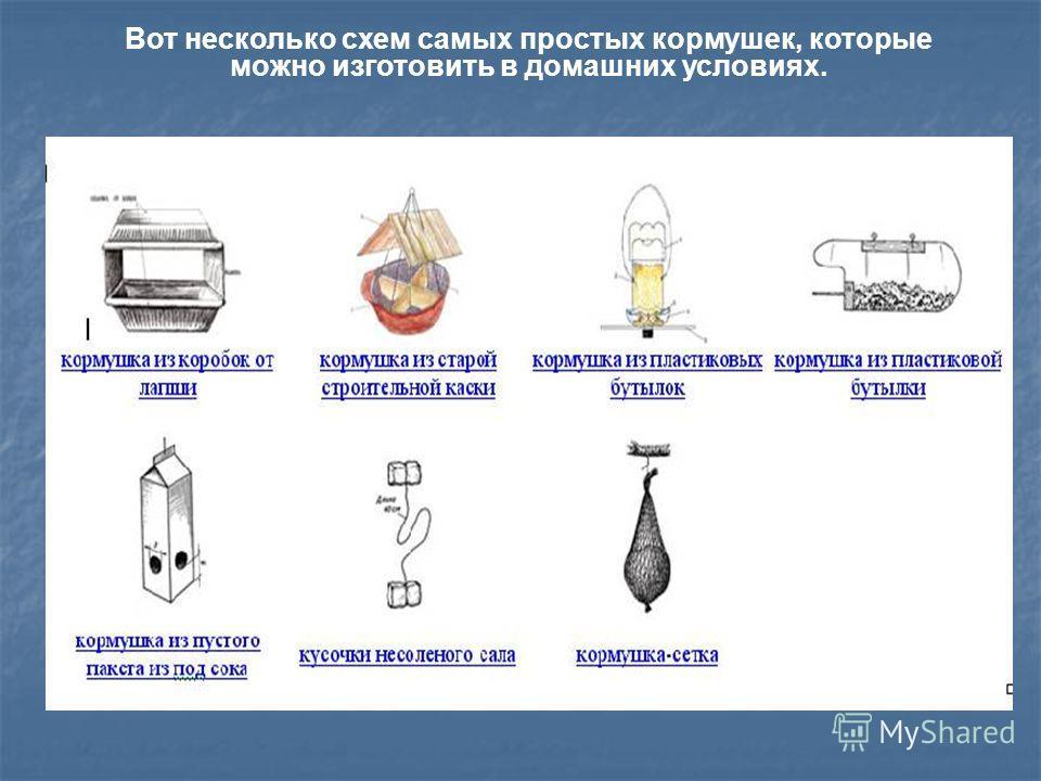 Вот несколько схем самых простых кормушек, которые можно изготовить в домашних условиях.