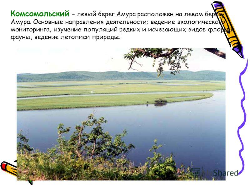 Комсомольский – левый берег Амура расположен на левом берегу Амура. Основные направления деятельности: ведение экологического мониторинга, изучение популяций редких и исчезающих видов флоры и фауны, ведение летописи природы.