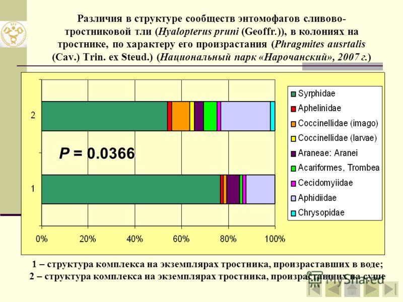 Различия в структуре сообществ энтомофагов сливово- тростниковой тли (Hyalopterus pruni (Geoffr.)), в колониях на тростнике (Phragmites ausrtalis (Cav.) Trin. ex Steud.) 1 – комплекс афидофагов в условиях окр. д. Задрачье (2007 г.); 2 – комплекс афид