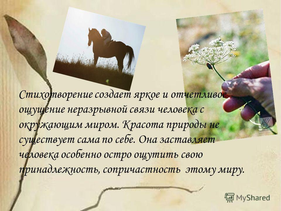 Стихотворение создает яркое и отчетливое ощущение неразрывной связи человека с окружающим миром. Красота природы не существует сама по себе. Она заставляет человека особенно остро ощутить свою принадлежность, сопричастность этому миру.