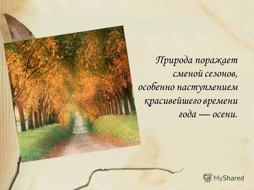 Природа поражает сменой сезонов, особенно наступлением красивейшего времени года осени.
