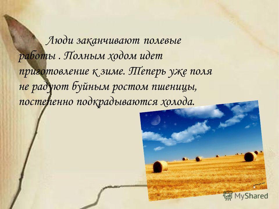 Люди заканчивают полевые работы. Полным ходом идет приготовление к зиме. Теперь уже поля не радуют буйным ростом пшеницы, постепенно подкрадываются холода.