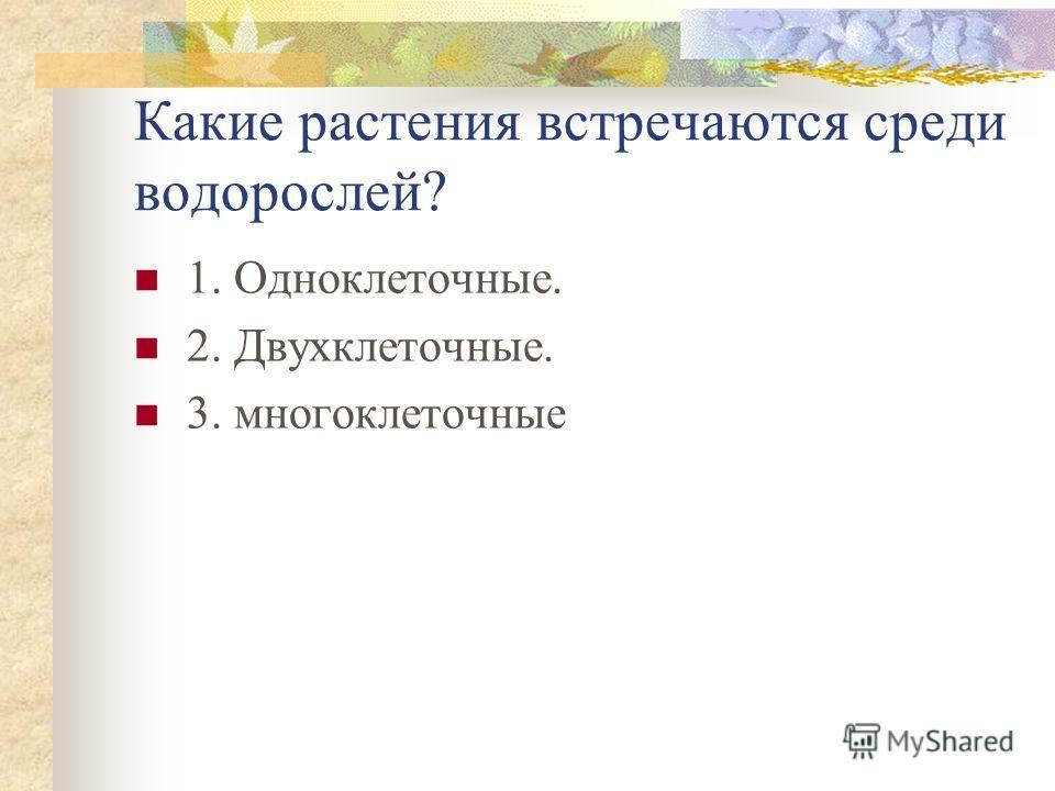 Какие растения встречаются среди водорослей? 1. Одноклеточные. 2. Двухклеточные. 3. многоклеточные