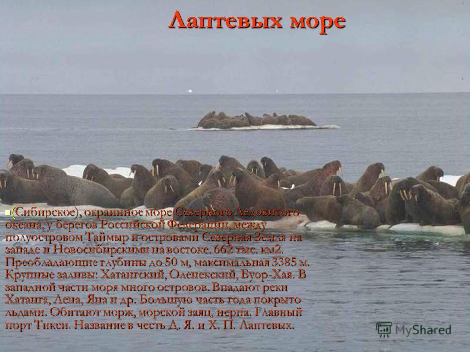 (Сибирское), окраинное море Северного Ледовитого океана, у берегов Российской Федерации, между полуостровом Таймыр и островами Северная Земля на западе и Новосибирскими на востоке. 662 тыс. км2. Преобладающие глубины до 50 м, максимальная 3385 м. Кру