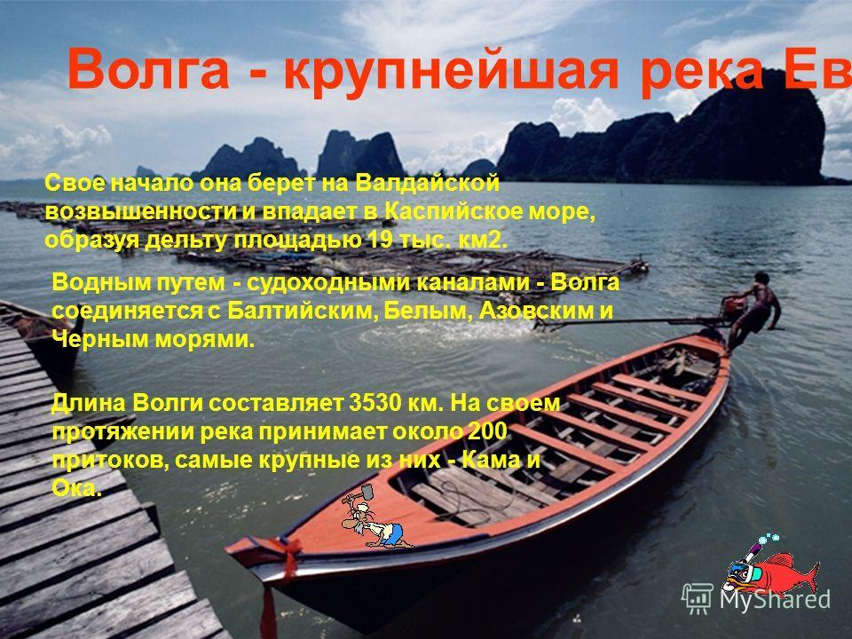 . Волга - крупнейшая река Европы Свое начало она берет на Валдайской возвышенности и впадает в Каспийское море, образуя дельту площадью 19 тыс. км2. Водным путем - судоходными каналами - Волга соединяется с Балтийским, Белым, Азовским и Черным морями