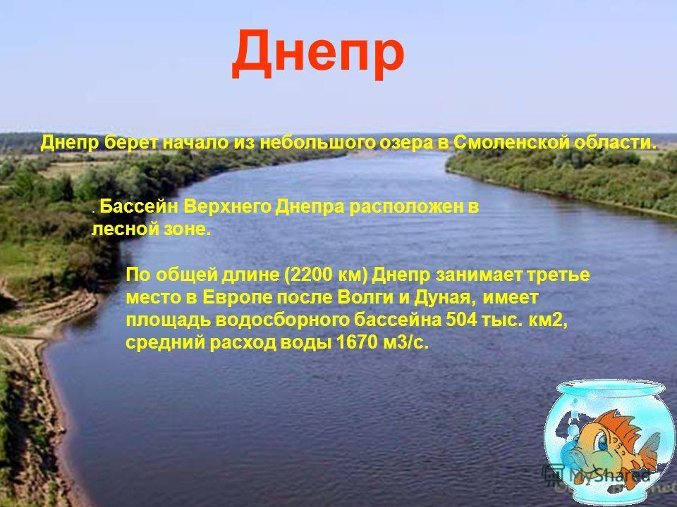 . Бассейн Верхнего Днепра расположен в лесной зоне. Днепр Днепр берет начало из небольшого озера в Смоленской области. По общей длине (2200 км) Днепр занимает третье место в Европе после Волги и Дуная, имеет площадь водосборного бассейна 504 тыс. км2