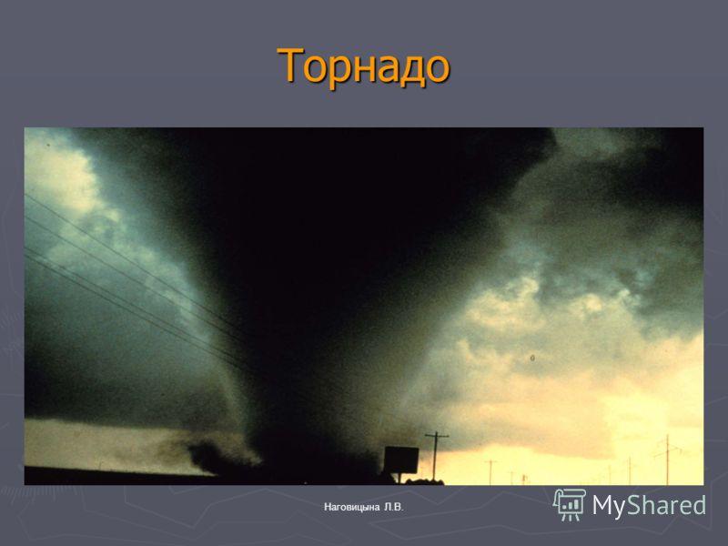 Наговицына Л.В. Торнадо