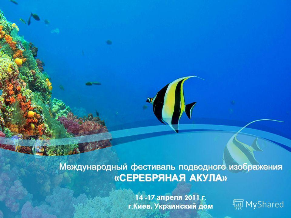 Международный фестиваль подводного изображения « СЕРЕБРЯНАЯ АКУЛА » Международный фестиваль подводного изображения « СЕРЕБРЯНАЯ АКУЛА » 14 -17 апреля 2011 г. г. Киев, Украинский дом