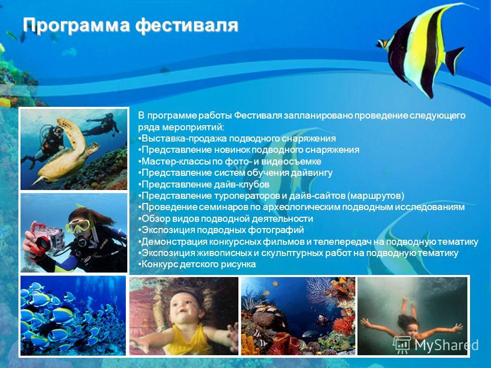 Программа фестиваля В программе работы Фестиваля запланировано проведение следующего ряда мероприятий: Выставка-продажа подводного снаряжения Представление новинок подводного снаряжения Мастер-классы по фото- и видеосъемке Представление систем обучен