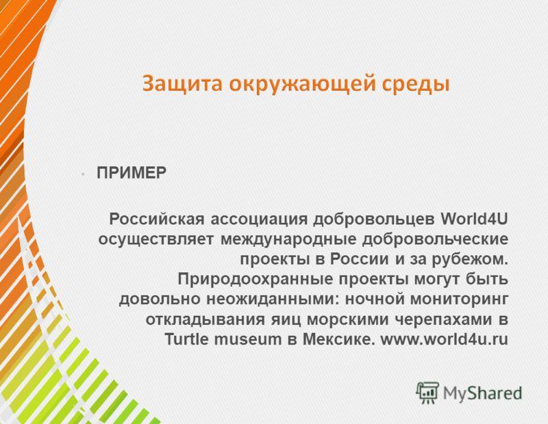 ПРИМЕР Российская ассоциация добровольцев World4U осуществляет международные добровольческие проекты в России и за рубежом. Природоохранные проекты могут быть довольно неожиданными: ночной мониторинг откладывания яиц морскими черепахами в Turtle muse