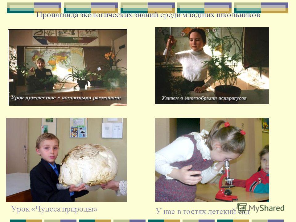 Пропаганда экологических знаний среди младших школьников Урок «Чудеса природы» У нас в гостях детский сад