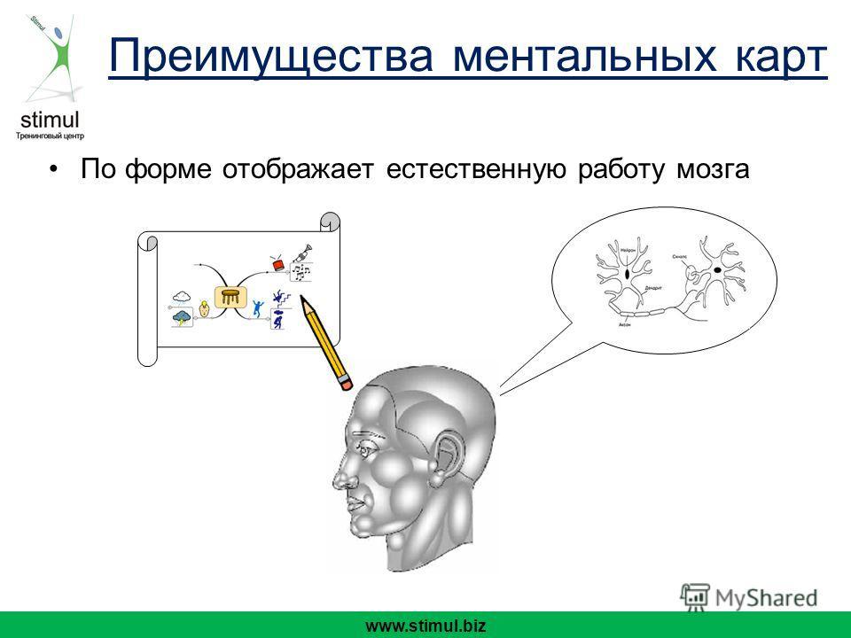 По форме отображает естественную работу мозга www.stimul.biz Преимущества ментальных карт