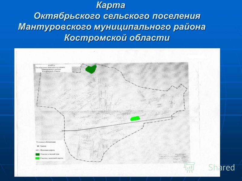 Карта Октябрьского сельского поселения Мантуровского муниципального района Костромской области