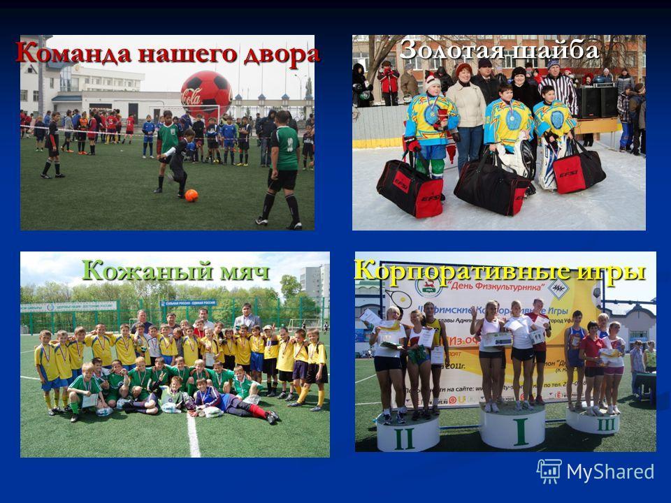 Кожаный мяч Команда нашего двора Корпоративные игры Золотая шайба