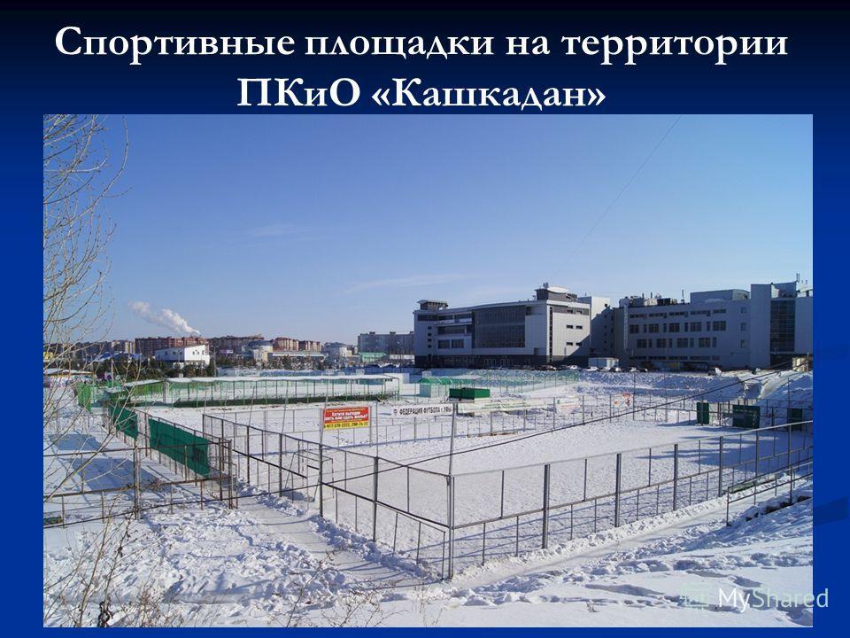Спортивные площадки на территории ПКиО «Кашкадан»
