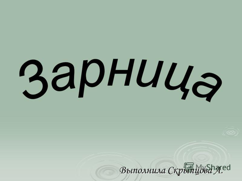Выполнила Скрыпцова А.
