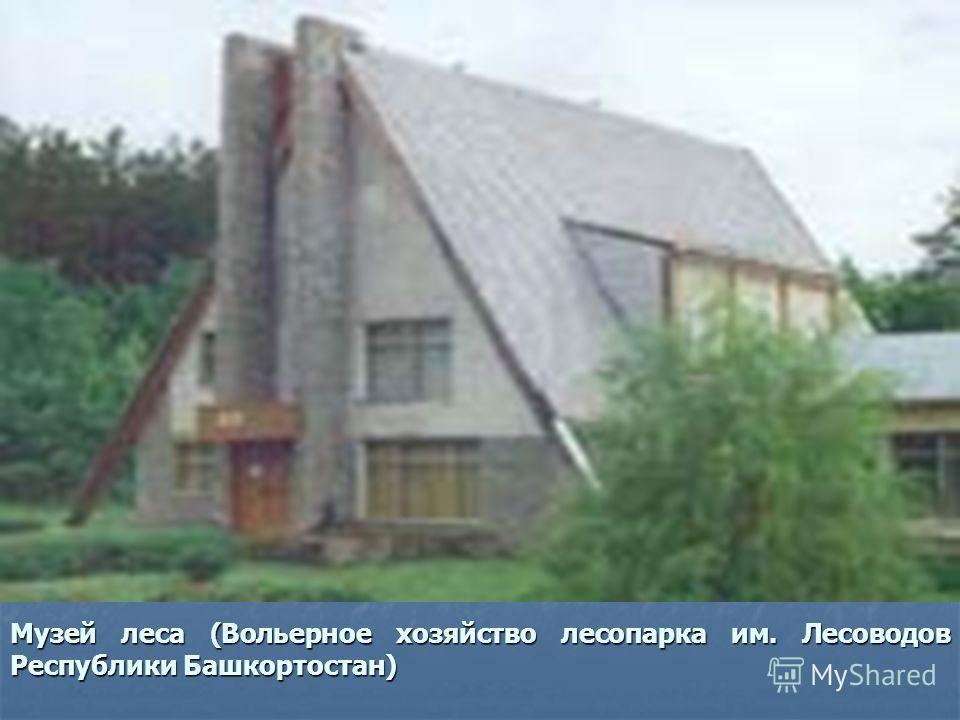 Музей леса (Вольерное хозяйство лесопарка им. Лесоводов Республики Башкортостан)