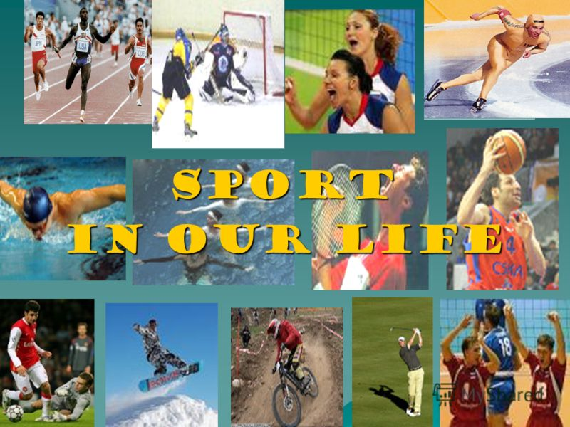 essay on importance of sports in our life What is the importance of sports in our life and how sports benefits our society a short essay and speech on the importance of sports for kids and adults.