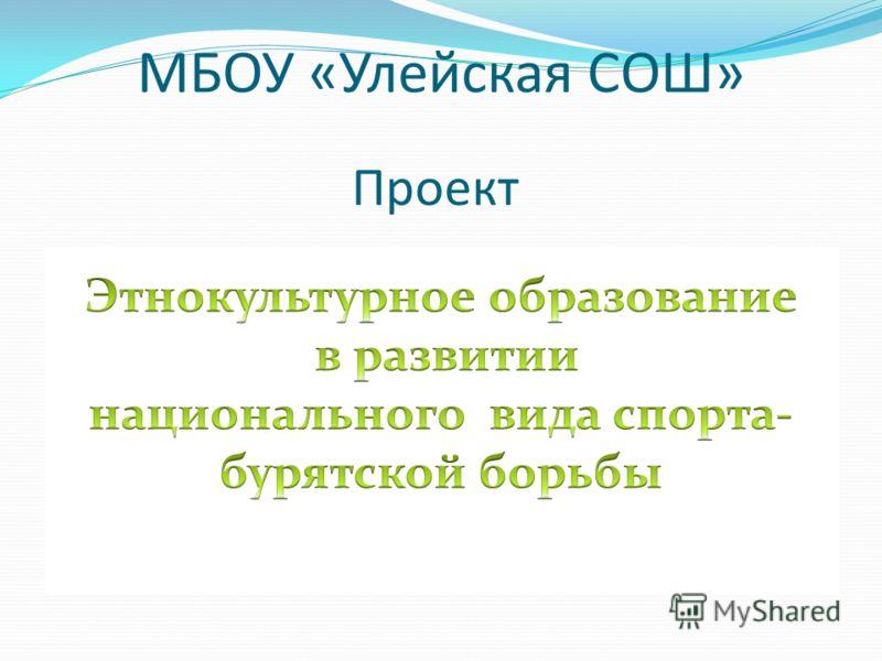 Проект МБОУ «Улейская СОШ»