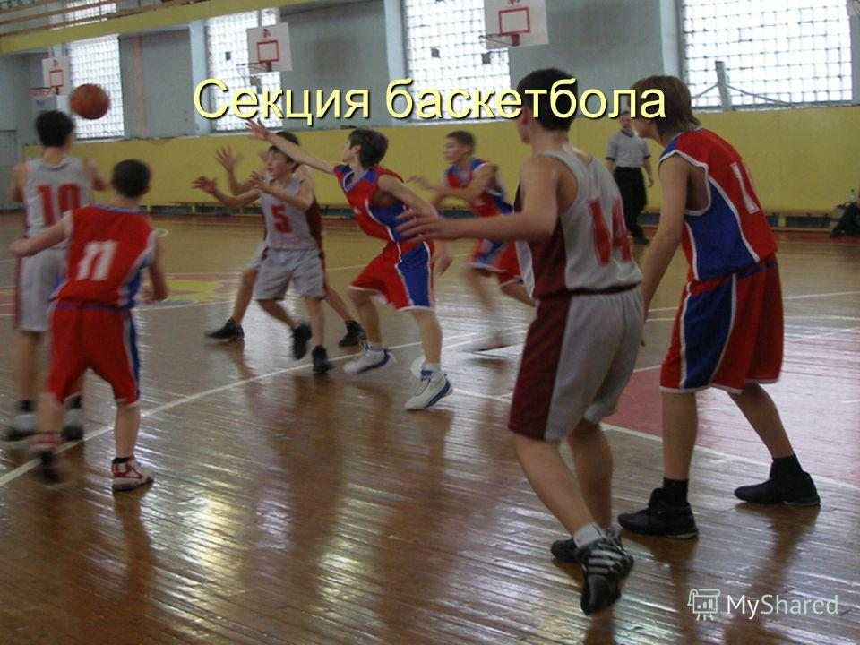 Секция баскетбола