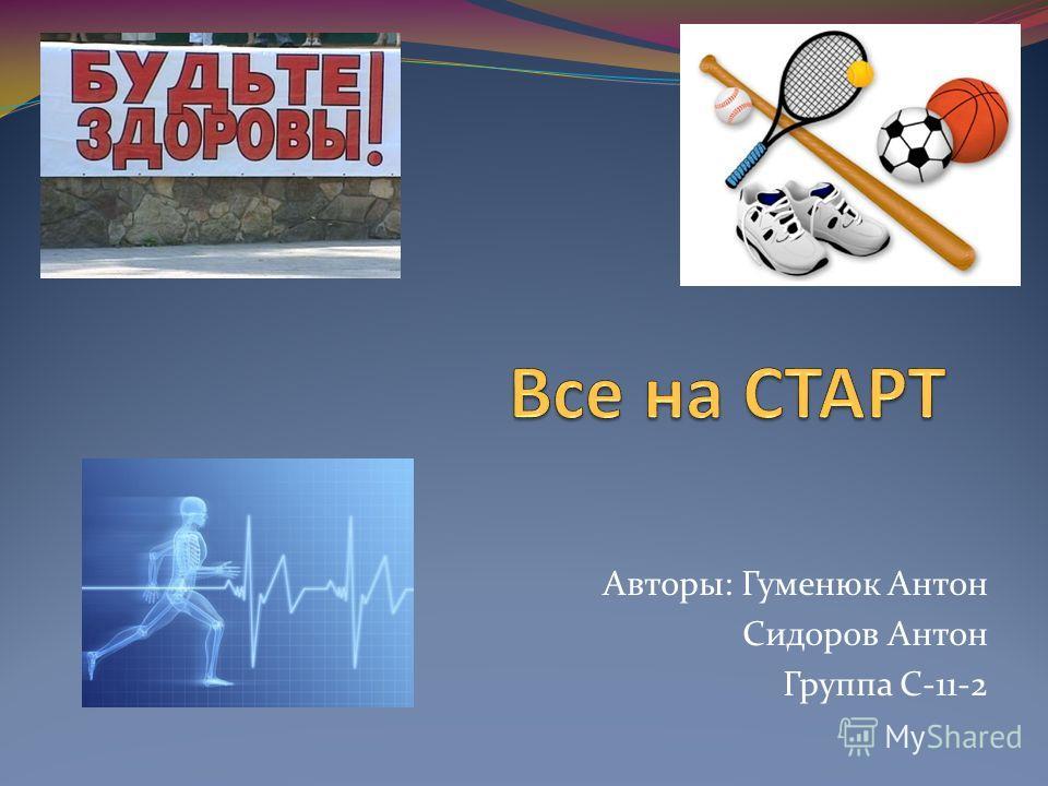 Авторы: Гуменюк Антон Сидоров Антон Группа С-11-2