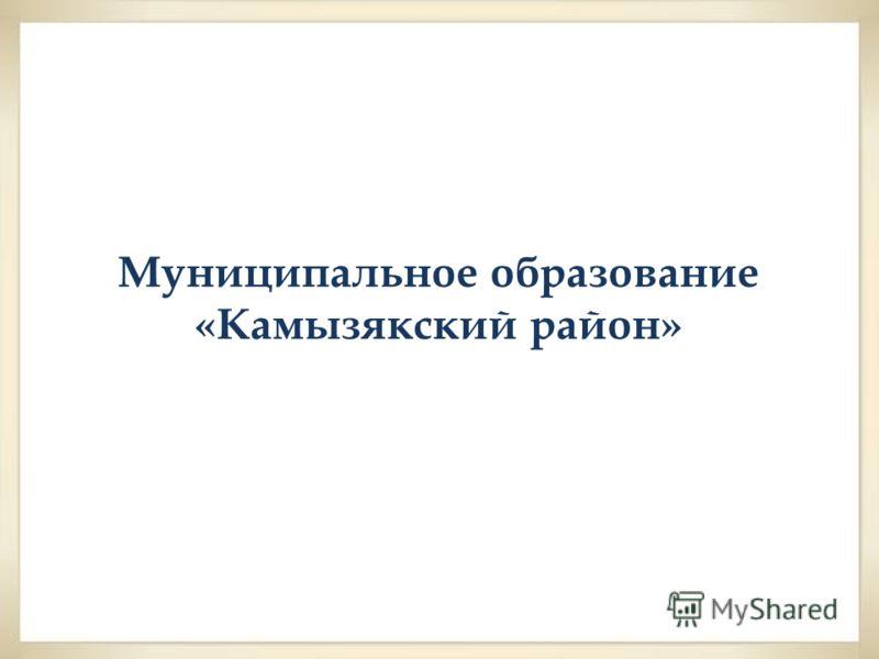 Муниципальное образование «Камызякский район»