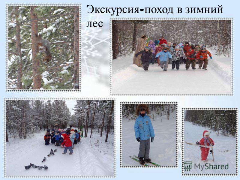 Экскурсия - поход в зимний лес