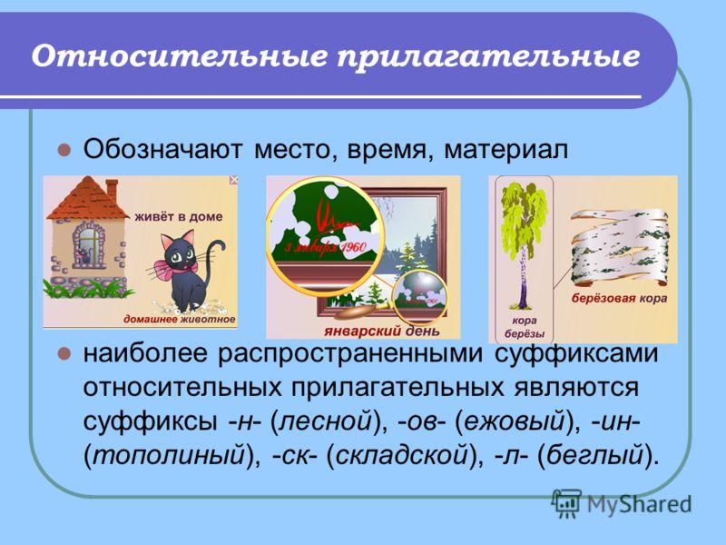 Относительные прилагательные Обозначают место, время, материал наиболее распространенными суффиксами относительных прилагательных являются суффиксы -н- (лесной), -ов- (ежовый), -ин- (тополиный), -ск- (складской), -л- (беглый).