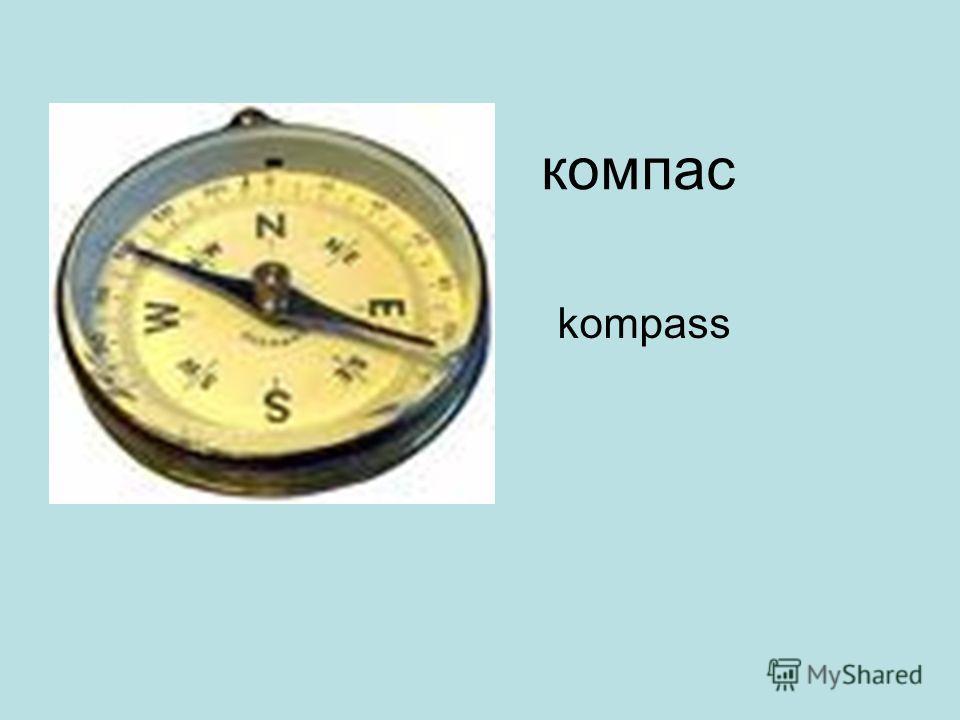компас kompass