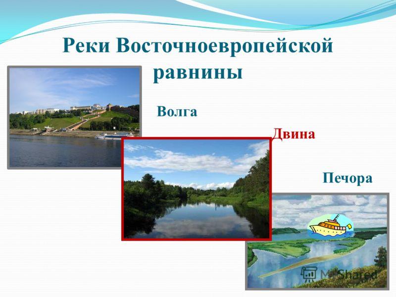 Реки Восточноевропейской равнины Волга Двина Печора