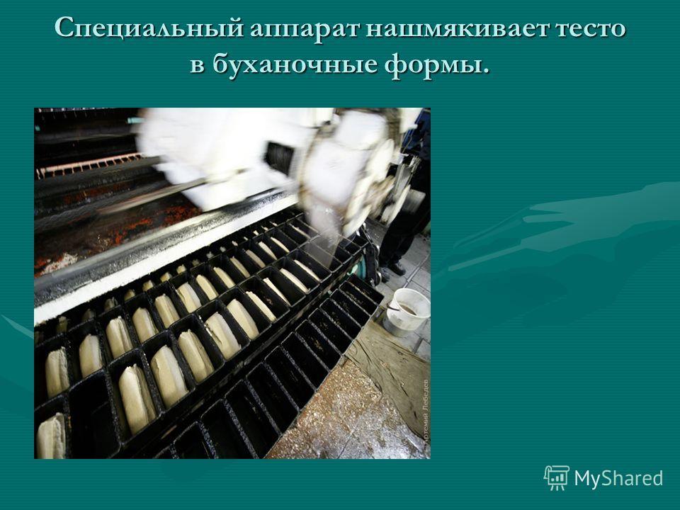 Специальный аппарат нашмякивает тесто в буханочные формы.